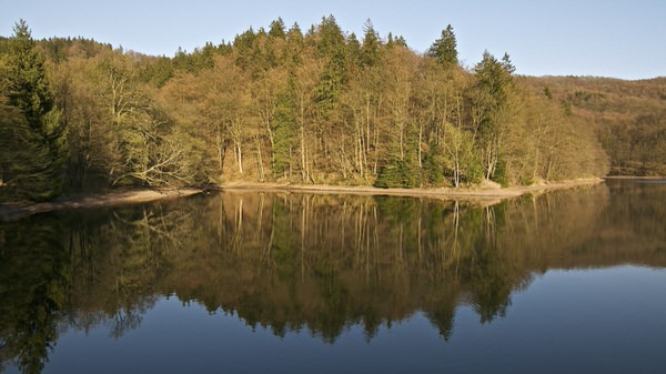 Wiesenbeker Teich: Bad Lauterberg, Harz